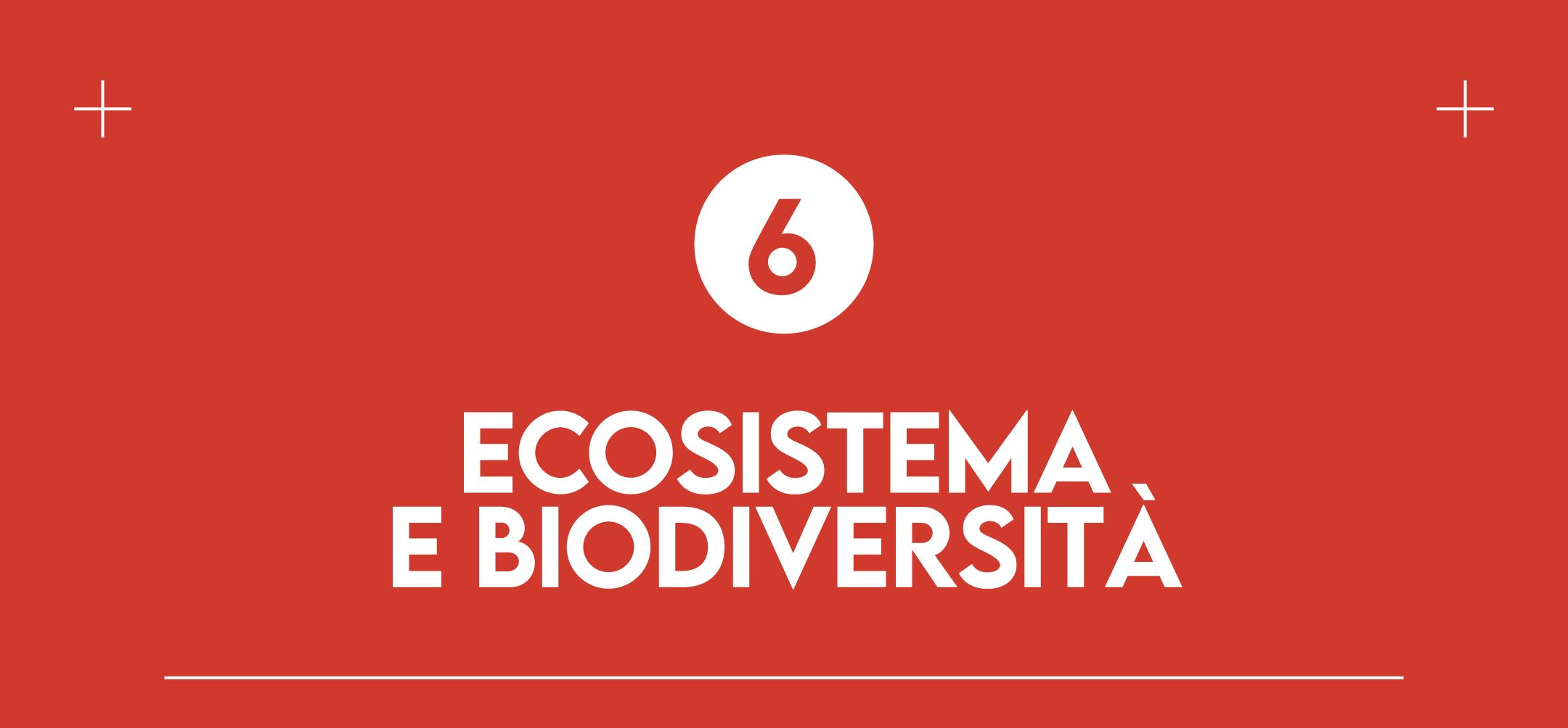6. Ecosistema e Biodiversità: molte piccole aziende agricole locali sono impegnate nella conservazione della biodiversità e prestano grande attenzione all'equilibrio degli ecosistemi che la circondano. Mangiare prodotti tradizionali è un mood per allungare la vita a colture e culture che rischiano di scomparire sotto la spinta di uniformità del mercato globale e proteggere la biodiversità entrando in contatto con un mondo di sapori, ricette e tradizioni che ci porteremo dentro per sempre.
