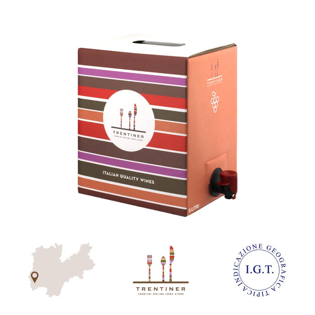 Merlot trentino vino IGT Vigneti delle Dolomiti bag in box 5 litri
