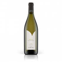 Vino bianco fermo Nosiola IGT Cantina Toblino