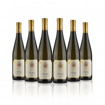 """Vino Riesling Trentino DOC """"Stelle"""" 6 bottiglie"""