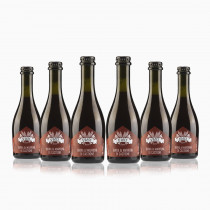 Birra ai marroni di Castione artigianale trentina 6 bottiglie