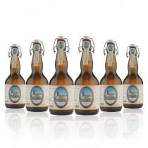 Birra di Fiemme Fleimbier 0,5 l confezione da 6 bottiglie