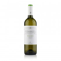 Müller Thurgau Trentino DOC Apponale