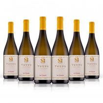 vino bianco Vette di san Leonardo 6 bottiglie
