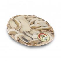 Funghi Porcini Essicati EXTRA 50