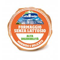 FORMAGGIO SENZA LATTOSIO ALTA DIGERIBILITÀ' 300 gr