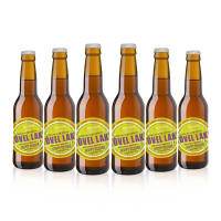 BIRRA TOVEL LAKE HOPPY PILSNER | 6 x 330 ml
