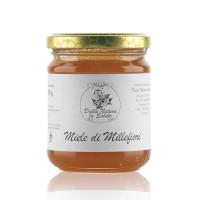 Miele di Millefiori dal Trentino 250 GR